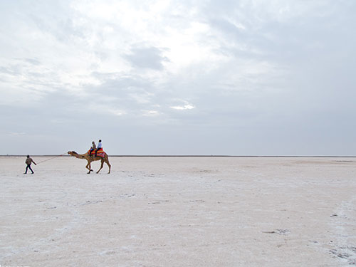 Amazing Wonders of Kutch